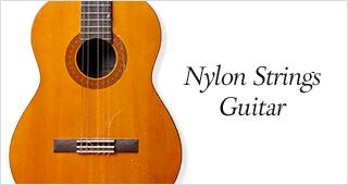 アコースティックインカテゴリーナイロン弦ギター